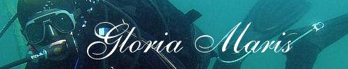 Gloriamaris - Kursy wodne - Świętokrzyskie